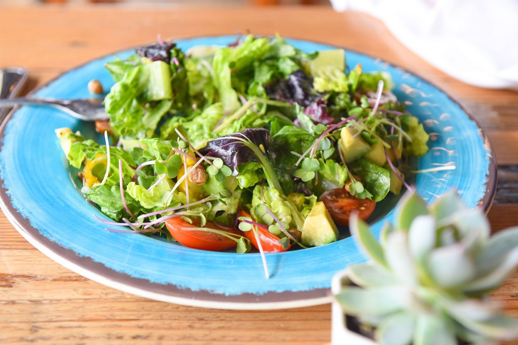 18206-tcr-marisol-salad